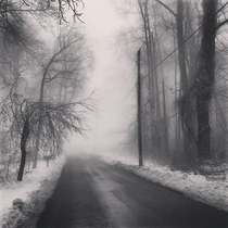 Fog swallows a snowy backroad in Northern Virginia  OC