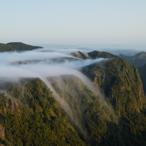Fogfalls below the Pinnacles Coromandel New Zealand