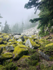 Foggy hike season in Washington  hikedailyprn