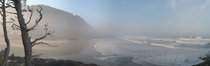 Foggy morning at Cape Perpetua Oregon - by Darren S