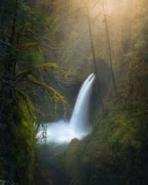 Foggy morning at Metlako Falls located on the Eagle Creek Trail in the Columbia River Gorge OR