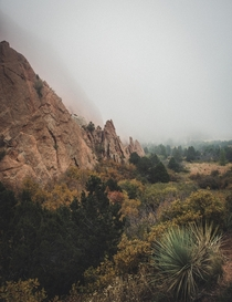 Foggy morning here at Garden of the Gods CO  OC