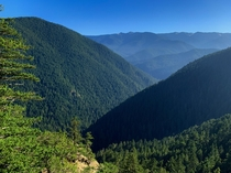 Foggy mountainsides of the Olympic National Forest WA OC