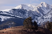Foothills of the Bridger Mountains in Montana