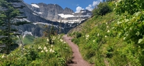 For a second there I thought I was in the Disney movie Grinnell Glacier trail Montana