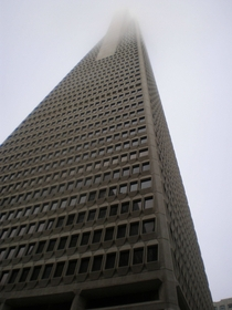 For my cake day my favorite picture that Ive ever taken of my hometown The Transamerica Pyramid in San Francisco CA