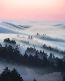 For Years Ive Tried to Capture the Fog Rolling Through Mt Tamalpais This Week I Captured My Bucket List Shot  nickfjord