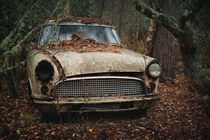 Ford Consul left in the woods  by Lukasz Malkiewicz