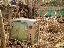 Forgotten Motorola TV in a fallen-in farm workshop