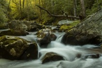 Forney Creek Great Smoky Mountains National Park -