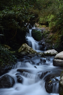 Found a great little waterfall hiking in the Gold Coast hinterland QLD Australia