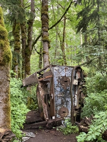 Found the skeletal remains of a bus in the middle of a forest