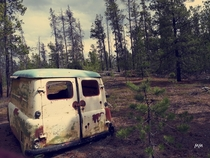 Found this beautiful van abandoned hidden in the forest Northern Canada First time posting here Should I post another vantage point of the same vehicle