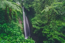 Found this small waterfall surrounded by lush greenery Nangka waterfall West Java Indonesia