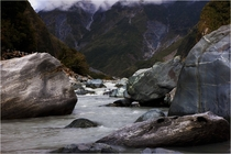 Fox River Fox Glacier NZ x
