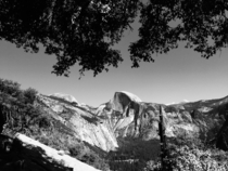 Framed by Nature Half Dome Yosemite