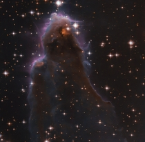Free floating Evaporating Gaseous Globule frEGGs captured by Hubble