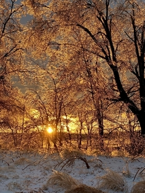 Freezing ice storm in CT ends with warm golden rays