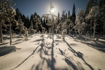 Freezing moonlit night in Lapland Finland   IG mpxmark