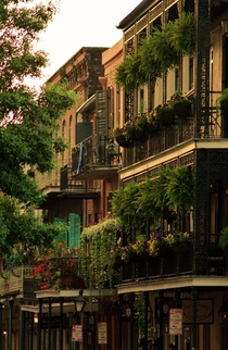 French Quarters in New Orleans Louisiana