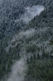 Fresh snow and lingering clouds in the Cascades of Oregon