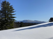 Fresh snow at Weissner Woods VT Worcester Range in the background