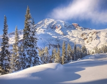 Fresh Snow on Mt Rainier Washington  photo by Kevin McNeal
