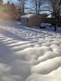 Fresh snow on top of melted snow in Pennsylvania back yard X