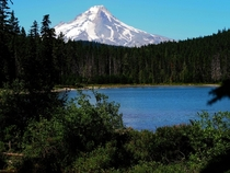 Frog Lake and Mt Hood Oregon in Summer