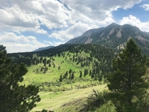 From a hiking trail in Boulder CO