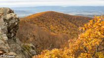 From Hawksbill Summit Shenandoah VA