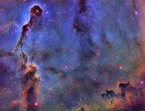 From my light polluted backyard in fort Worth tx I share with you my elephants trunk nebula in sho Hubble pallete