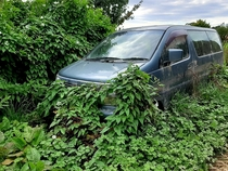 From New Zealand When the family wagon is surplus to requirements just push it up against a hedge and let nature claim it