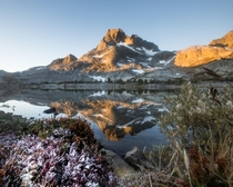 Frost on Bilberry Leaves below Banner Peak at Thousand Island Lake CA