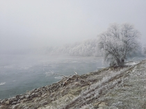 Frosted Danube river bands in Devin Slovakia
