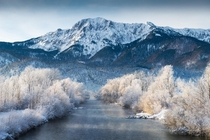 Frosty Morning at lake Kochelsee Bavaria Germany  IG konstantinkraemer