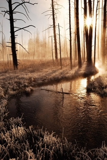 Frosty Yellowstone Morning  It was  degrees below zero that morning