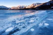 Frozen Abraham Lake with methane bubbles trapped inside - Canada   by Vicki Mar
