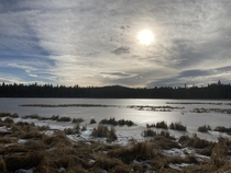 Frozen flooded meadow New Years day  Upper Deschutes River Oregon