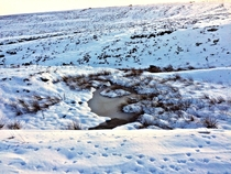 Frozen pond and bird footprints Peak District England