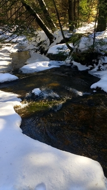 Frozen stream in Vermont