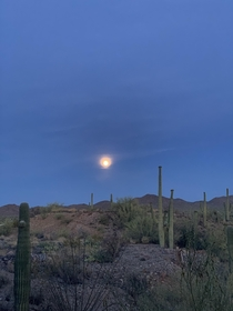 Full moon and Jupiter this evening in Tucson Arizona