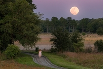 Full Moon Rising over Watermelon Pond near Gainesville Florida