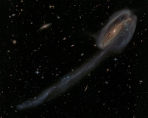 Galaxy Arp  and the Tadpoles Tail