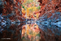 Gateway to Eden Serpentine Gorge in the West MacDonnell Ranges Northern Territory Australia