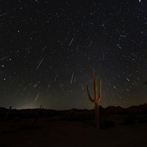 Geminids Shower in the Arizona desert