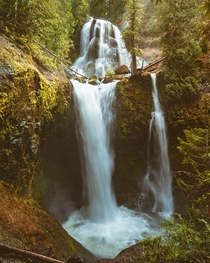 Gifford Pinchot Waterfall Washington