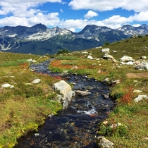 Glacial Stream in Whistler British Columbia