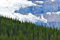 Glacier along Icefields Parkway Alberta