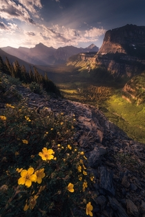 Glacier National Park is my favorite national park in the lower  always something amazing to photograph Glacier National Park MT  mattymeis